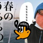 [初心者釣り日記] 今日こそは釣れると思って春のうららの海釣り公園にやってきた初心者