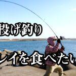 【海釣り苫小牧】漁港から投げ釣りでカレイを狙う!穴釣りで根魚も!