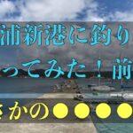 富浦新港に釣りに行ってみた!前編
