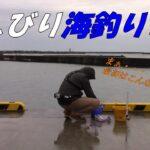 【のんびり海釣りソロ釣行】海釣りデビューしました