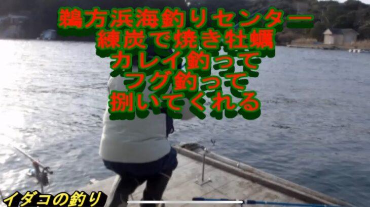 鵜方浜海釣りセンター カレイ釣って 牡蠣貰って焼く フグ釣れたら捌いてくれる