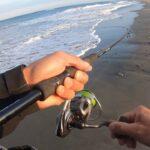 春を感じさせる陽気な午後に遠州灘サーフで釣れたのは…いつかは大座布団…