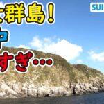 衝撃!クエだらけの海!釣り人の聖地、男女群島の海中が凄すぎ…!【前編】