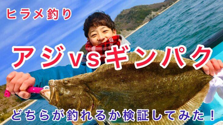 岡山ヒラメ釣り アジvsギンパク どちらか釣れるか徹底検証