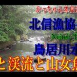 空撮❌渓流釣りリメイク【北信漁協編#0】