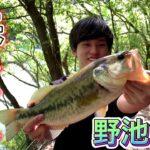 【ブラックバス】海が大荒れな時はバス釣りが1番!!野池で春のデカバスを狙う!!