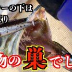 【海釣り】前回ウマヅラアジを釣った大型タンカーの下にジグを落としたら102cmの大きな魚が釣れました!!【ตกปลาทะเล】