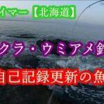 海サクラ・ウミアメ釣行2021⑤~自己記録更新の魚~