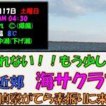 【2021年4月17日】まだ釣れない!網走の海サクラマス釣り場偵察&素振り 第2回戦 オホーツク海 網走近郊の釣り場 アメマスも釣れない!