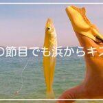 【海釣り】ギリギリ3月(人生の節目)でも浜からキス釣り