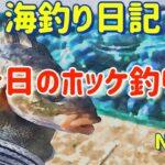 【焼尻島の海釣り】今日のホッケ釣り【海釣り日記3】