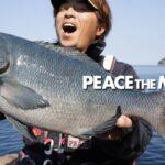 PEACE THE MOVIE #87「初津久見でグレ釣り!!」九州地方・大分県津久見の旅/平和卓也(1043)