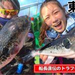 【トラフグ釣り】遂にXDAY到来⁉︎ 東京湾の天然とらふぐを狙う!仕掛け・釣り方解説有り‼︎【浦安吉野屋】 【湾フグ】【虎河豚釣り】