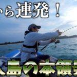 最強ポテンシャルの海で朝から魚釣って食らう  ep2