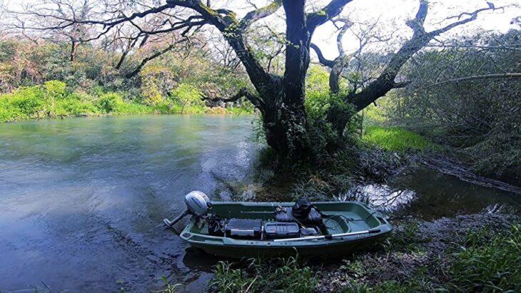 小舟で清流を釣り歩いて木の上に泊まったよ!【南国の釧路川と呼ばれた川】