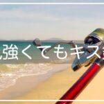 【海釣り】波風強くても浜からキス釣り