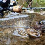 イワナを求めて渓流ベイトフィネスで里川を釣り歩く釣りバカ!