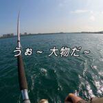 【釣りブロブ】浜名湖泳がせ釣りで大物がきたが…