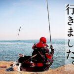 【磯釣り】春らしく真鯛を釣りに行ったら、幸せな1日になりました!
