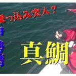 【海釣り情報  船釣り情報】近所の海でトラフグも釣れる!後半戦