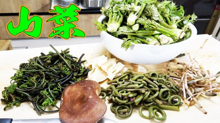 自分達で採って来た大量の山菜で超絶品な料理達が出来た !!