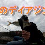 春のアジングに行ったらアジもサバも意外と釣れた!デイゲームで釣れるとやっぱ嬉しい!