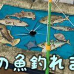 今回は海釣りバージョン!何が釣れるかわからない釣りゲームをやってみた!