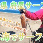 日本海遠征!新潟県府屋サーフでサーフ釣り!