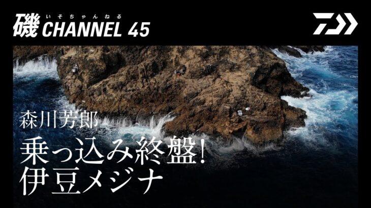 森川芳郎「乗っ込み終盤! 伊豆メジナ」|第四十五回 磯ちゃんねる