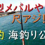 【激釣】大型メバルや尺アジ 春の海釣り公園がアツい!
