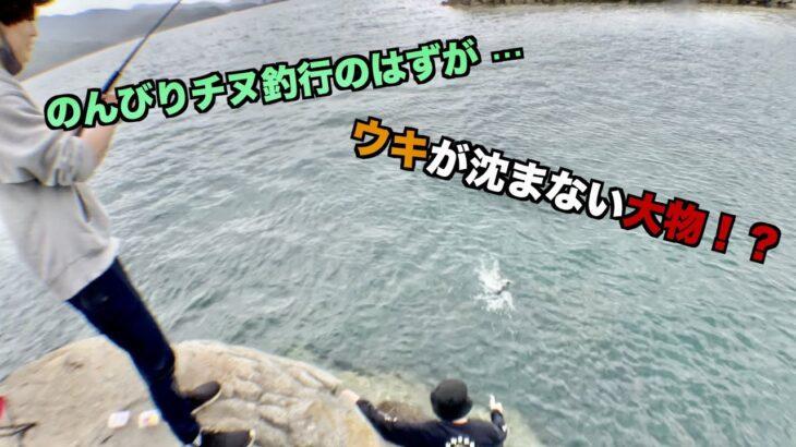 【海釣り】ウキが沈まない!?チヌのシーズンフカセでまさかの魚が!?