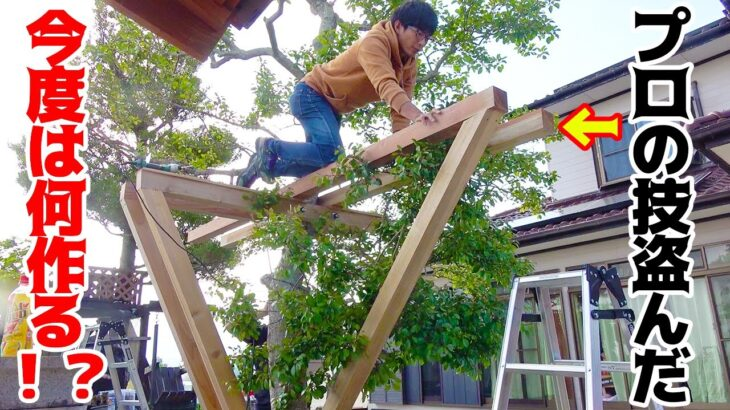 #1 本格的な技法を使って庭の木に○○○を作る!!