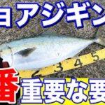 【ショアジギング】これが釣果を得る秘訣!ショアジギングの1番重要な要素で青物連発!!