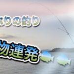 【2021年釣り】巨大な魚が大量!!??