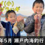 2021年5月 瀬戸内海釣行【前編】(コブダイ、ウマヅラハギ)