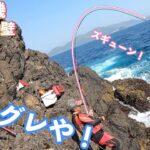 尾長グレ釣れるか!?鵜来島の超A級磯壁で磯釣り!!