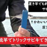 【海釣り】AmazonのJINKING 渓流竿でトリックサビキ!いろいろ釣れました!