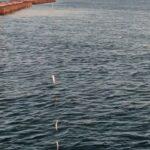 浜名湖海釣り公園サビキ釣りNo.3🐟🐟🐟