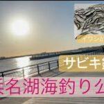 R3.5.10 浜名湖海釣り公園 サビキ釣り