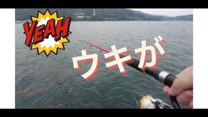和歌山 マリーナシティ 海釣り公園 いってきたよ