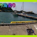 まぐろが一人でのんびり海釣り行ってきました。