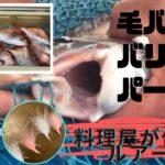 料理屋が作るルアー~海釣り毛針で鯛を釣り上げる。