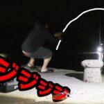 夜の離島でイカを餌にブッコミ釣りしたらどデカイ魚が釣れてしまった【離島生活】