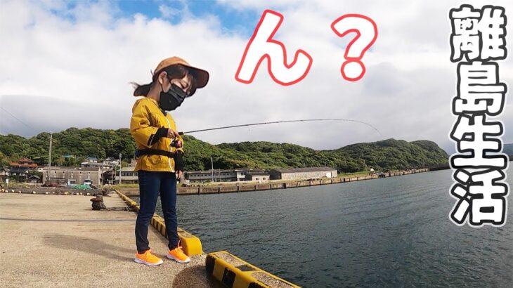 魚種豊富な離島であの「人工エサ」を使って釣りをした嫁が…【離島生活】
