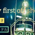 【船釣り】はじめてのイカメタル
