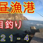 【石狩・濃昼漁港】投げ釣りでホッケ、カレイを狙う。リベンジなるか?