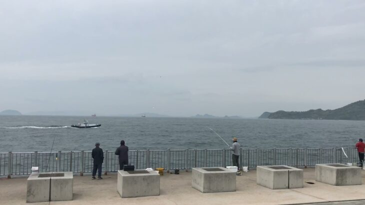 愛媛県松山市 海釣り公園かな?