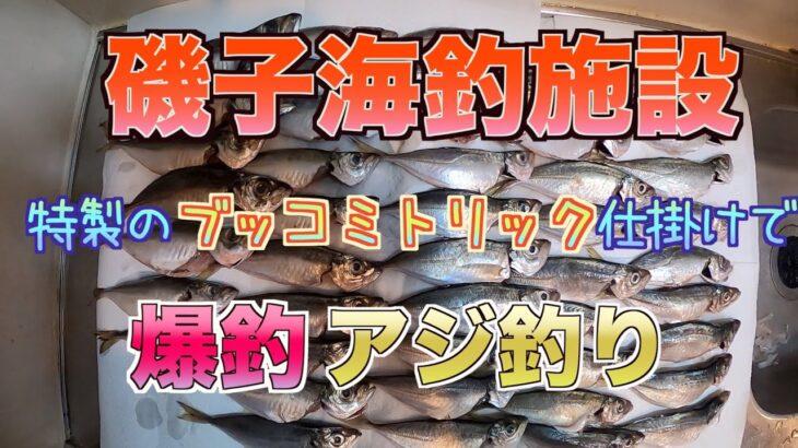 【至高のブッコミトリックサビキ完成】特製仕掛けで釣りしたらアジがひたすら入れ食いに【磯子海釣り施設】