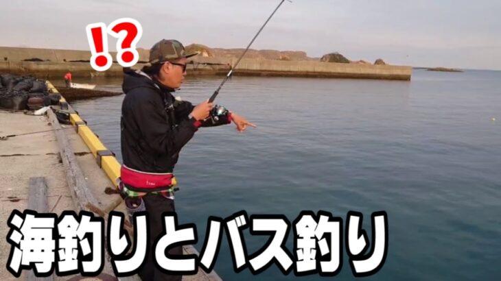 海釣りとバス釣りに行ってモヤモヤした日【エギング】【海釣り】【バス釣り】【魚釣り】