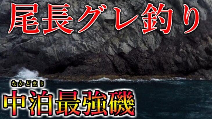 最強尾長グレ釣り場で超絶バトル!